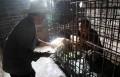 Bizarro: Homem doente é enjaulado na China - Fotos